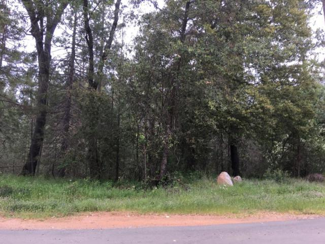 0 Woodhouse Mine Road, West Point, CA 95255 (MLS #18033451) :: Heidi Phong Real Estate Team