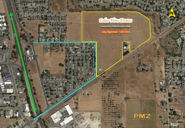 1106 Ayers Lane, Galt, CA 95632 (MLS #18033569) :: Heidi Phong Real Estate Team