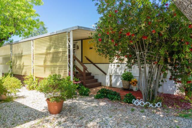 6387 Mother Lode Drive #72, Placerville, CA 95667 (MLS #18033587) :: REMAX Executive