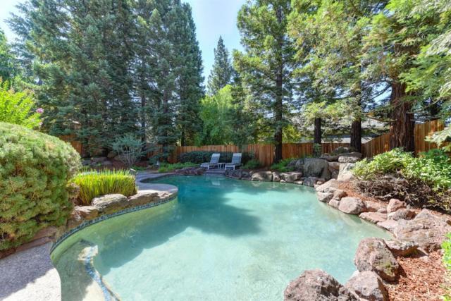 8536 Kenneth View Court, Fair Oaks, CA 95628 (MLS #18033596) :: Thrive Real Estate Folsom