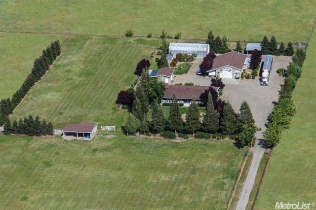 10443 Colony Road, Wilton, CA 95693 (MLS #18033600) :: The Merlino Home Team