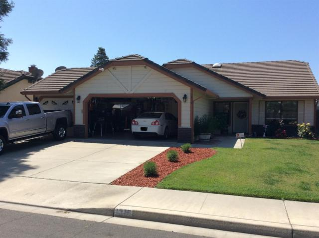 1316 Serene Lane, Ceres, CA 95307 (MLS #18033671) :: Heidi Phong Real Estate Team
