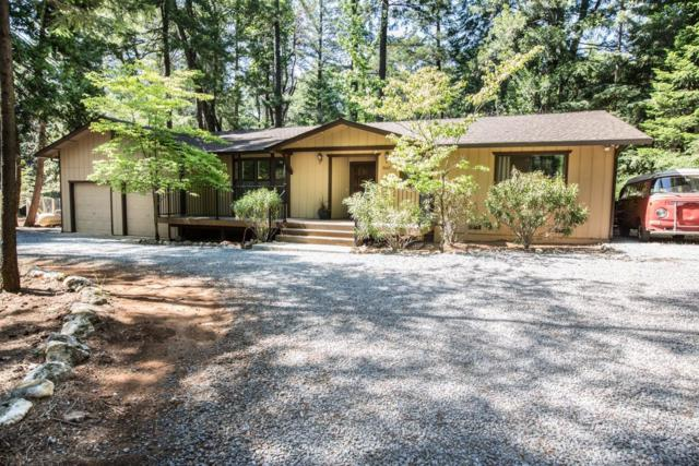 5667 Cold Springs Drive, Foresthill, CA 95631 (MLS #18033765) :: The Merlino Home Team