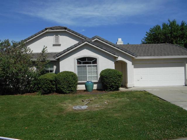 9145 Pinto Canyon Way, Roseville, CA 95747 (MLS #18033818) :: Heidi Phong Real Estate Team