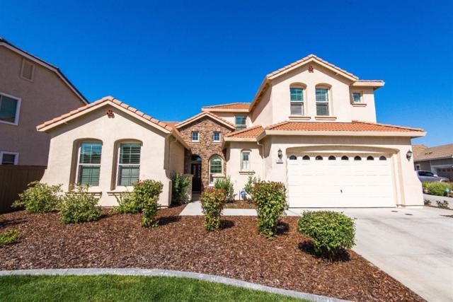 333 Lasso Court, Roseville, CA 95747 (MLS #18034464) :: The Merlino Home Team
