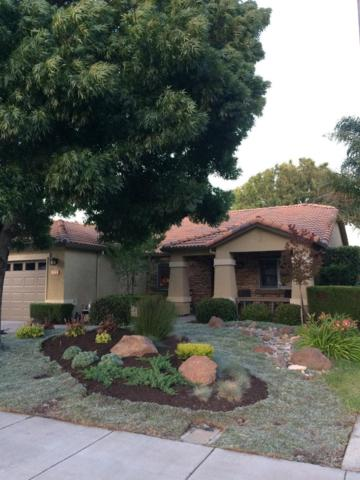 880 Marie Angela Drive, Tracy, CA 95377 (MLS #18034549) :: REMAX Executive