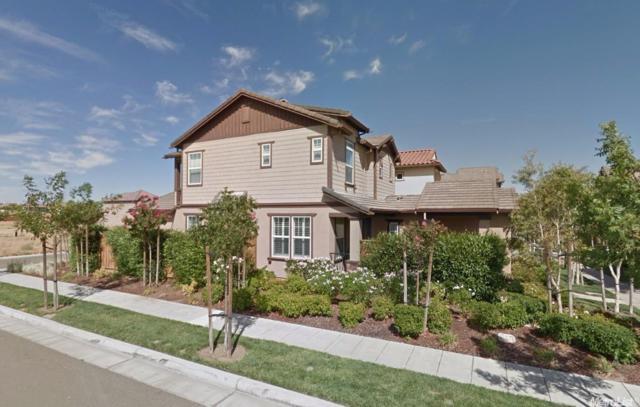 246 W Santa Cruz Way, Mountain House, CA 95391 (MLS #18034578) :: REMAX Executive