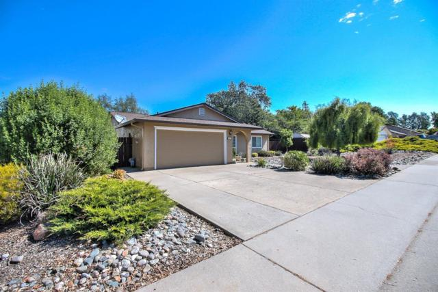 5931 Angelo Drive, Loomis, CA 95650 (MLS #18034609) :: The Merlino Home Team