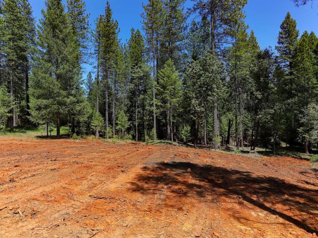 10491 Woods Ravine Court, Nevada City, CA 95959 (MLS #18034693) :: The Merlino Home Team