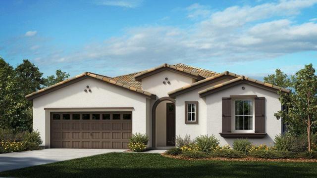 2299 Frank Blondin Lane, Tracy, CA 95377 (MLS #18034717) :: REMAX Executive