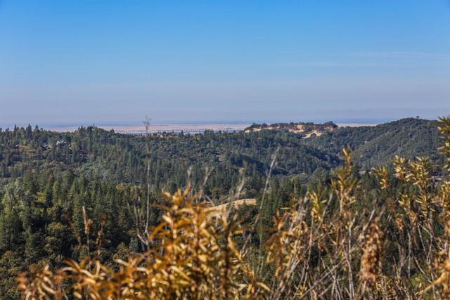 14255 Quartz Mountain Road, Sutter Creek, CA 95685 (MLS #18034722) :: Dominic Brandon and Team