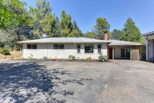 3990 Lakeview Drive, Shingle Springs, CA 95682 (MLS #18035388) :: NewVision Realty Group