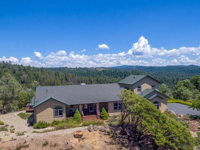 2761 Escondito Cir., Camino, CA 95726 (MLS #18035643) :: Team Ostrode Properties