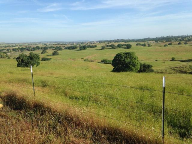 174-Acres Camanche Parkway North, Ione, CA 95640 (MLS #18035814) :: NewVision Realty Group