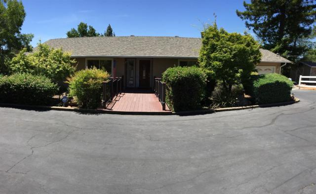 3252 Sierrama Drive, Shingle Springs, CA 95682 (MLS #18035922) :: NewVision Realty Group