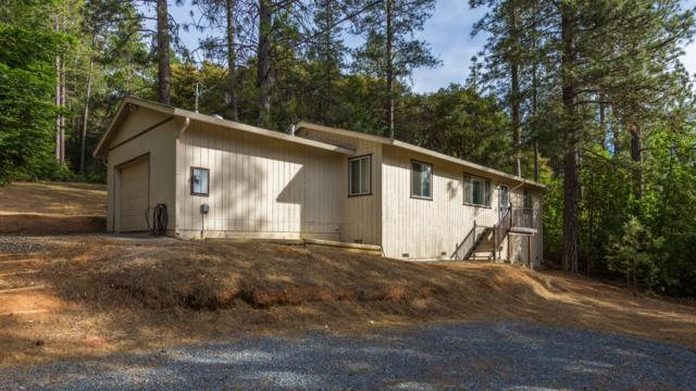 19417 Foresthill Road, Foresthill, CA 95631 (MLS #18036201) :: Team Ostrode Properties
