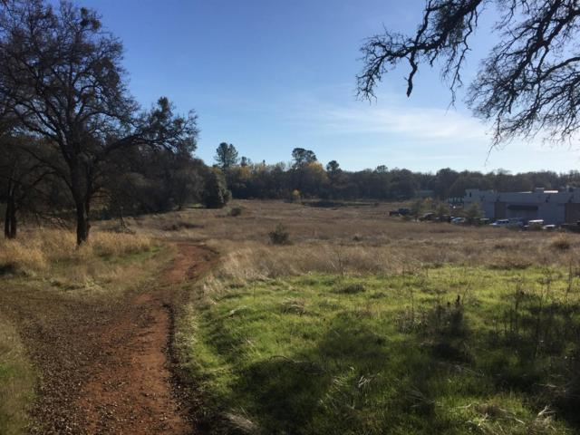 0 Business Drive, Shingle Springs, CA 95682 (MLS #18036225) :: NewVision Realty Group
