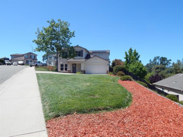 472 Michelle Drive, Jackson, CA 95642 (MLS #18036318) :: Team Ostrode Properties