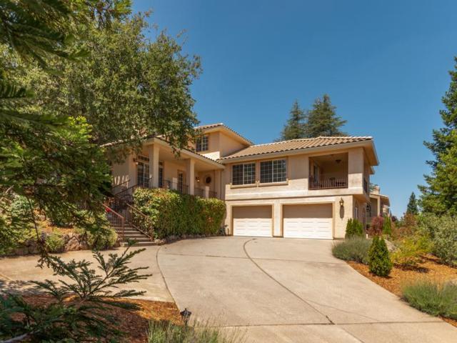2654 Bertella Road, Cameron Park, CA 95682 (MLS #18036442) :: Heidi Phong Real Estate Team