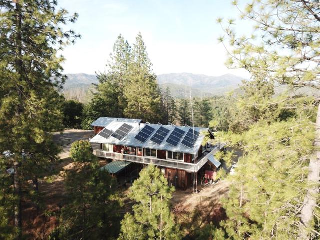 7318 Dogtown Road, Coulterville, CA 95311 (MLS #18036536) :: NewVision Realty Group
