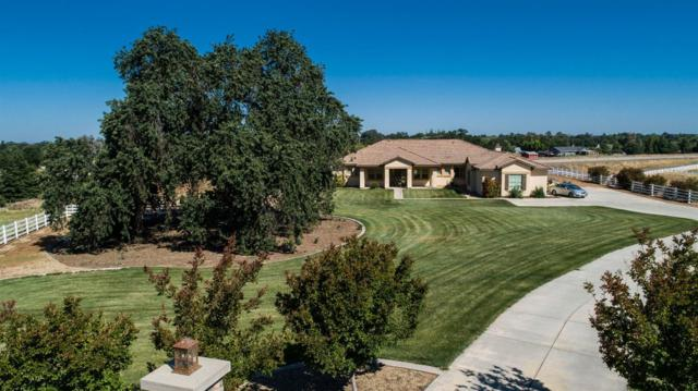 12701 Bridle Rack Court, Wilton, CA 95693 (MLS #18036874) :: Team Ostrode Properties