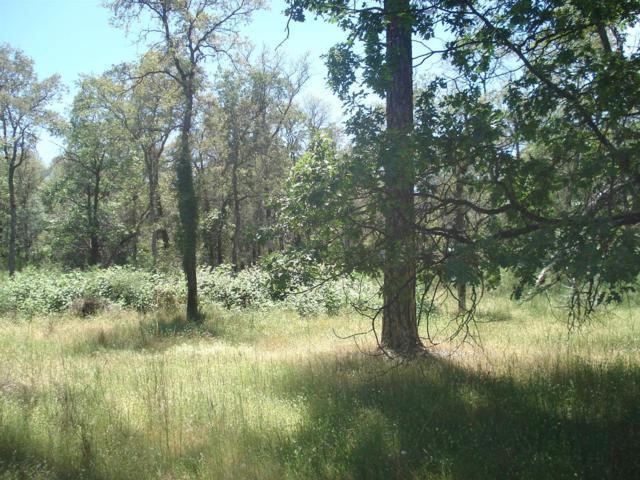 0 Camino Cumbe, Greenwood, CA 95635 (MLS #18036958) :: Keller Williams - Rachel Adams Group