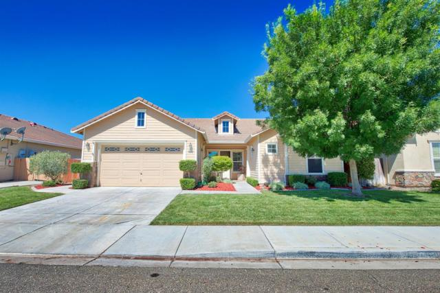 709 Bunting Lane, Newman, CA 95360 (MLS #18037345) :: Team Ostrode Properties
