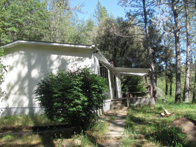 13636 Newtown Road, Nevada City, CA 95959 (MLS #18037435) :: NewVision Realty Group