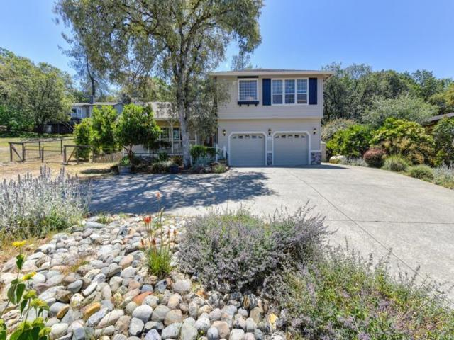 1964 American River Trail, Cool, CA 95614 (MLS #18037578) :: Team Ostrode Properties