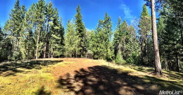 0 Lot 30 Juarez Rd, Placerville, CA 95667 (MLS #18037608) :: NewVision Realty Group