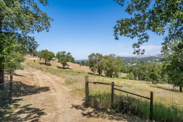 8325 Amber Lane, Newcastle, CA 95658 (MLS #18037781) :: NewVision Realty Group