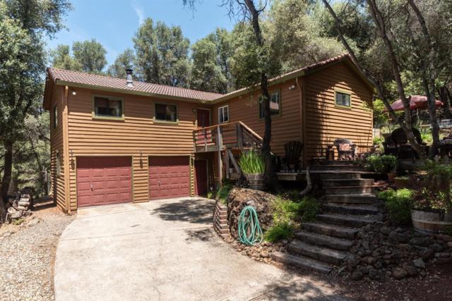23406 Amber Court, Auburn, CA 95602 (MLS #18037846) :: Team Ostrode Properties