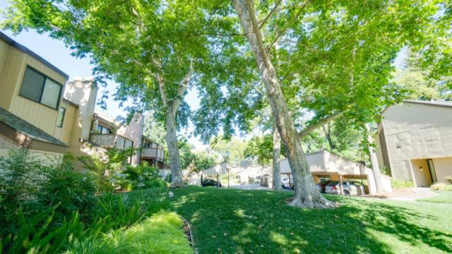 545 Woodside Oaks #1, Sacramento, CA 95825 (MLS #18037888) :: NewVision Realty Group