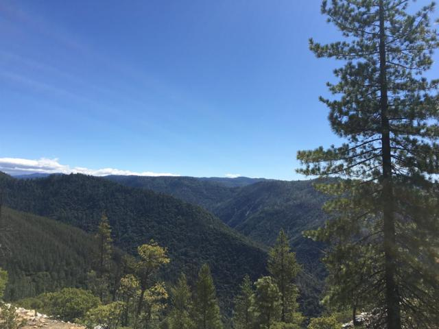 0 Red Hill Mine, Foresthill, CA 95631 (MLS #18038217) :: Team Ostrode Properties