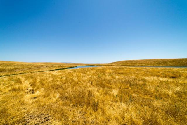 0 Fields, Snelling, CA 95369 (MLS #18038478) :: Dominic Brandon and Team
