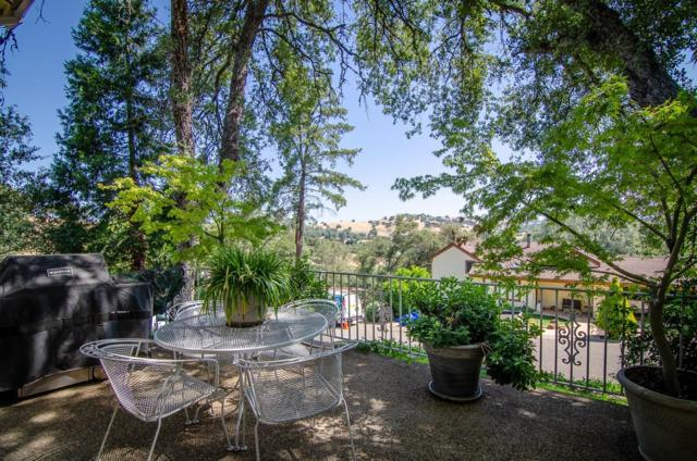 95 David Drive, Sutter Creek, CA 95685 (MLS #18038654) :: NewVision Realty Group