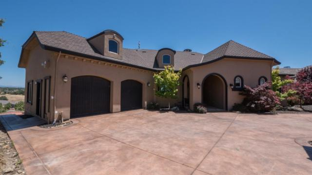 173 Leaf Crest Court, Copperopolis, CA 95228 (MLS #18038674) :: Dominic Brandon and Team