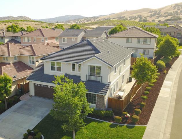 20833 Shrub Oak Drive, Patterson, CA 95363 (MLS #18038703) :: Team Ostrode Properties
