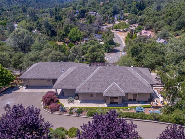 1486 Nesting Way, Placerville, CA 95667 (MLS #18038830) :: NewVision Realty Group