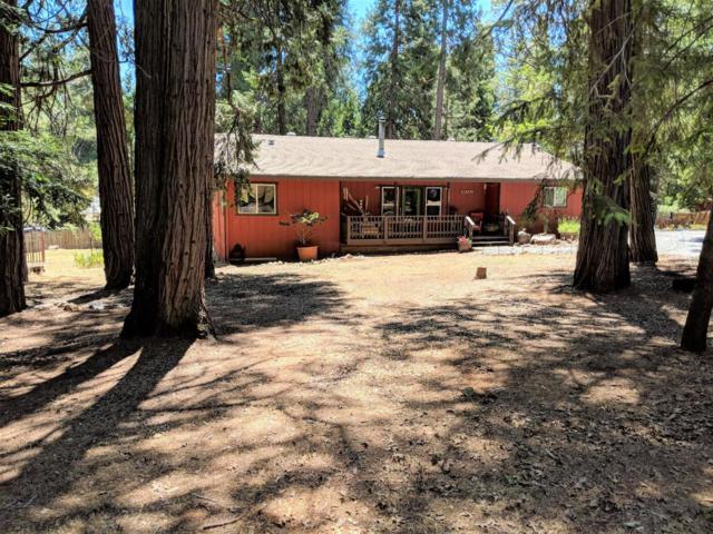 5692 Glen Drive, Foresthill, CA 95631 (MLS #18038883) :: Team Ostrode Properties