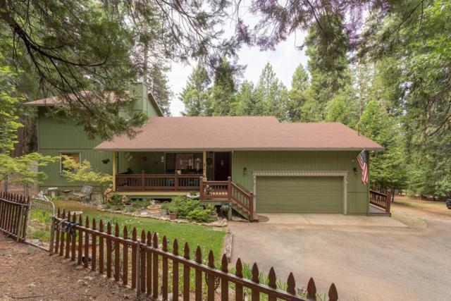 6020 Chickaree Lane, Pollock Pines, CA 95726 (MLS #18038927) :: NewVision Realty Group