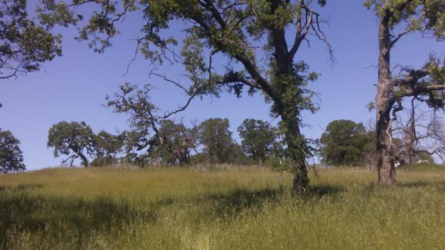 9724 Rastro Way, La Grange Unincorp, CA 95329 (MLS #18039040) :: Heidi Phong Real Estate Team