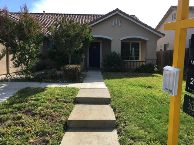 542 Osprey Drive, Patterson, CA 95363 (MLS #18039068) :: Team Ostrode Properties