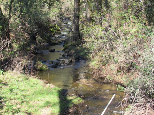 0 NE Brandon Road, Shingle Springs, CA 95682 (MLS #18039097) :: NewVision Realty Group