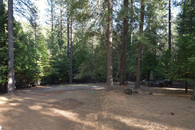 27367 Ashland Drive, Pioneer, CA 95666 (MLS #18039169) :: NewVision Realty Group