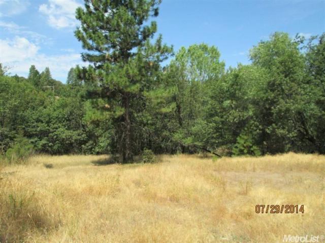 0 Hwy 88, Pine Grove, CA 95665 (MLS #18039189) :: NewVision Realty Group
