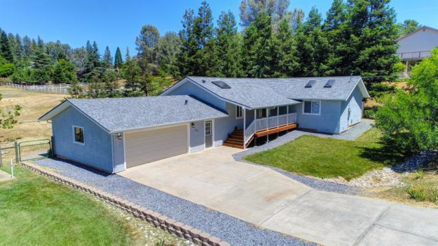 3317 Talking Mountain Trail, Cool, CA 95614 (MLS #18039292) :: Team Ostrode Properties