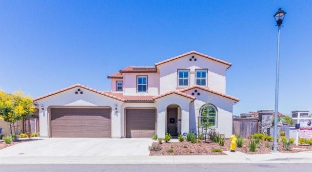 3900 Deergrass Court, Rocklin, CA 95677 (MLS #18039548) :: Heidi Phong Real Estate Team