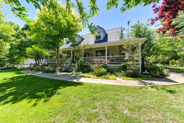 10552 Rough And Ready Road, Rough And Ready, CA 95975 (MLS #18039581) :: NewVision Realty Group