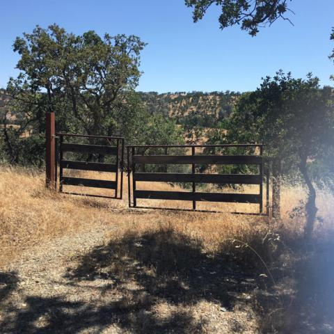 292 Medina, La Grange, CA 95329 (MLS #18039620) :: NewVision Realty Group
